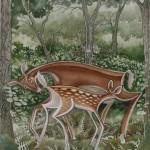 deer butt