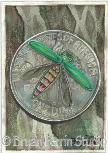 Emerald Ash Borer Adult image produced for the Catskill Regional Invasive Species Partnership